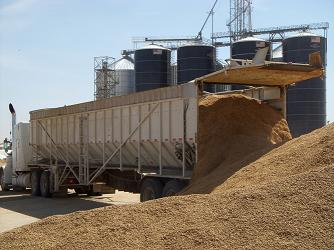 cattle-feed raw materials
