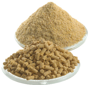 Maize feed flours : native or pelletized